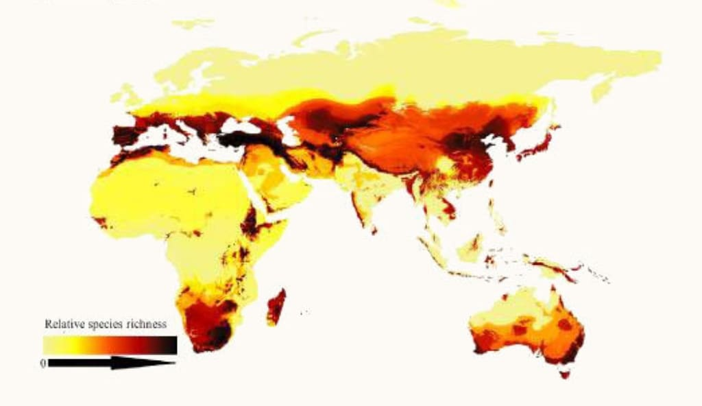 A look at relative species richness of bees around the world, showing how bees prefer arid, temperate regions rather than the tropics. Areas with darker colors have more species. Image credit: ORR ET AL./CURRENT BIOLOGY