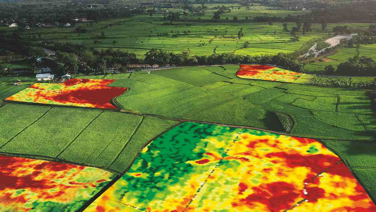 Precision agriculture could boost Indias food production capacity, encourage sustainable farming