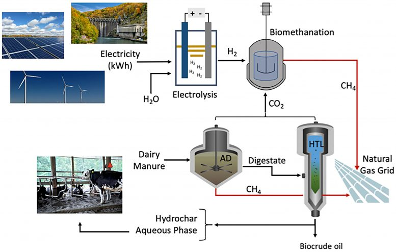 Integrated Biorefinery Utilizing Agriculture Waste Biomass