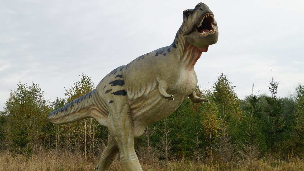 Earth was home to billions of T-rex over lakhs of generations, suggests new study