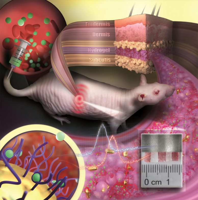 Gold Nanoparticles Embedded in a Porous Hydrogel