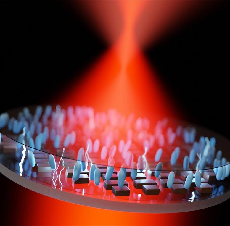 Ultrathin, Electrically Tunable Metalens