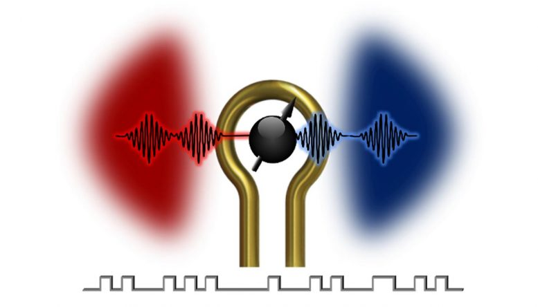 Coherent Information Exchange Between Magnons and Microwave Photons